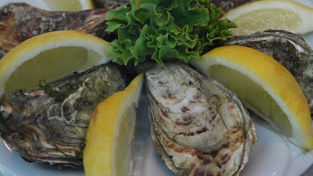 oysters-427424_640