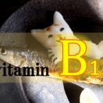 ビタミンB₁₂の生理作用・食事摂取基準・多く含む食品などを簡単にまとめてみた!