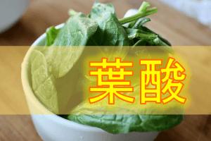 葉酸の生理作用・食事摂取基準・多く含む食品などを簡単にまとめてみた!