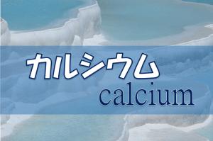カルシウムの生理作用・食事摂取基準・多く含む食品などを簡単にまとめてみた!