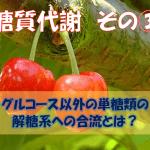 【力説!】グルコース以外の単糖類の解糖系への合流とは?
